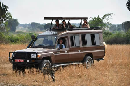 Safari Land Cruiser Extended Omega Car Rental Uganda